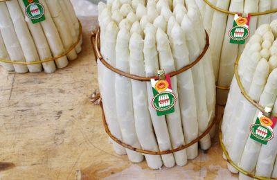 Menu degustazione Asparago 2019
