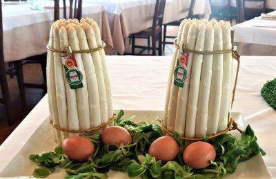 Bassano White Asparagus D.O.P.